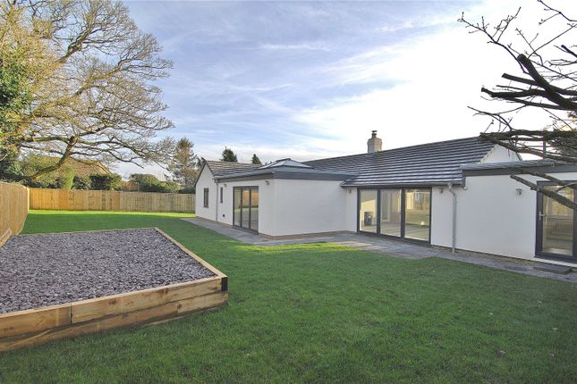 Thumbnail Bungalow for sale in Tobacconist Road, Minchinhampton, Stroud, Gloucestershire