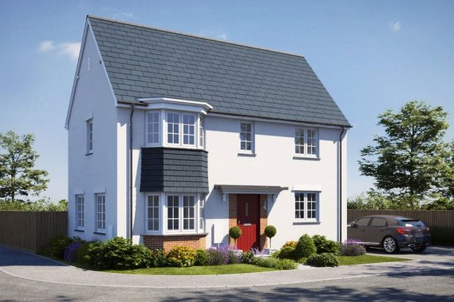 Thumbnail Detached house for sale in Roscoff Road, Dawlish