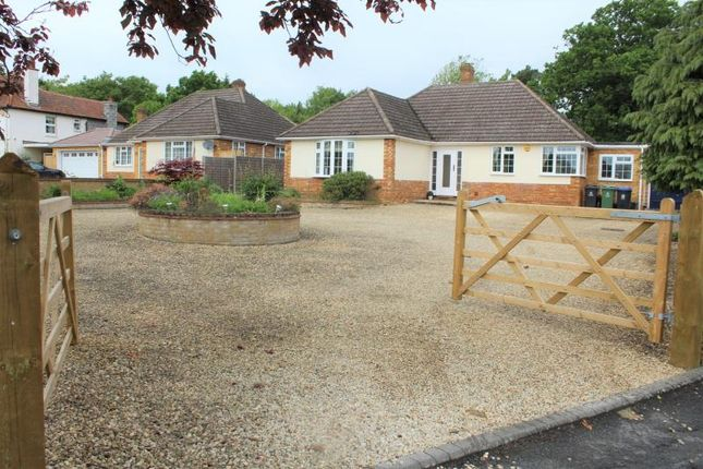 Thumbnail Detached bungalow for sale in Church Grove, Wexham, Slough