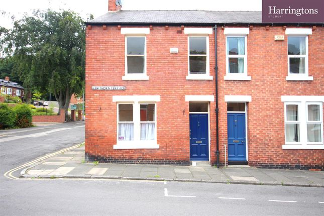 Thumbnail End terrace house to rent in Hawthorn Terrace, Durham