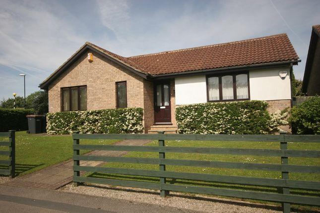 Thumbnail Detached bungalow for sale in Arthurs Avenue, Harrogate