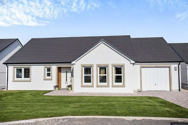 Thumbnail Bungalow for sale in Ottersburn Way, Crocketford, Dumfries