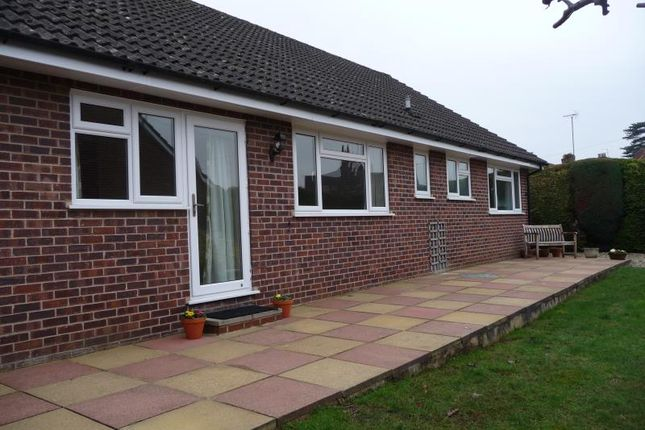 Thumbnail Detached bungalow to rent in 15 Enborne Road, Newbury, Berkshire