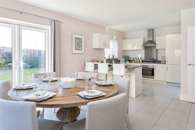 "Thumbnail Detached house for sale in ""Mitford"" at Anstey Road, Alton"