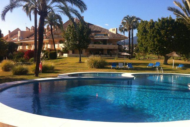 Outdoor Pool of Las Brisas, Marbella, Costa Del Sol, Andalusia, Spain