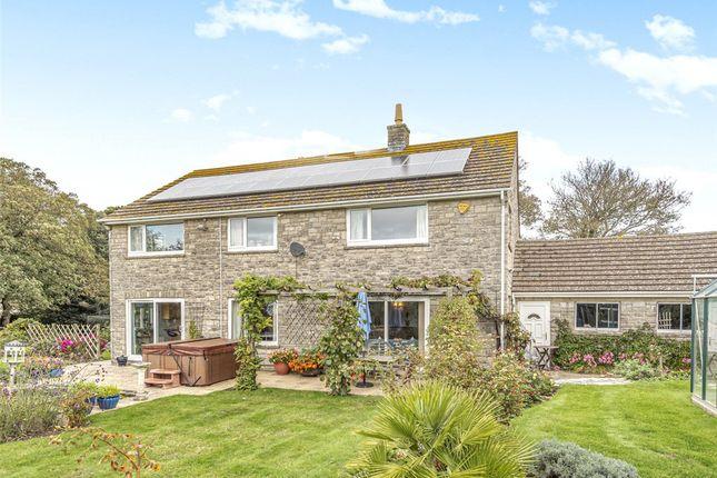 Thumbnail Detached house for sale in Swyre, Dorchester, Dorset