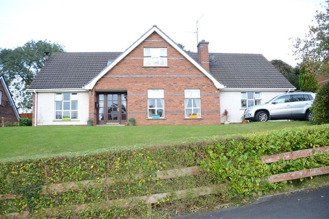 Thumbnail Detached house for sale in Rath Cuan Heights, Downpatrick, County Down