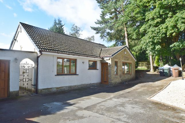 Thumbnail Detached bungalow to rent in Highfield Road, Idle, Bradford