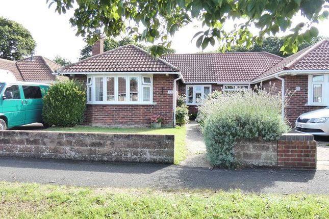 Thumbnail Semi-detached bungalow to rent in Harold Road, Stubbington, Fareham