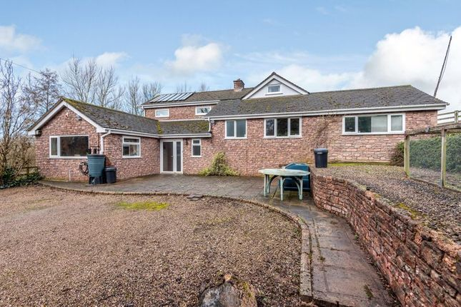 Thumbnail Detached house for sale in Pencoyd, St. Owen's Cross, Hereford