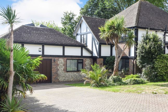 Thumbnail Detached house for sale in Greyfriars, Hove