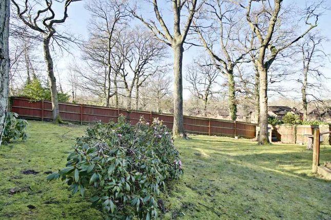 Garden At Back of Minden Close, Chineham, Basingstoke RG24