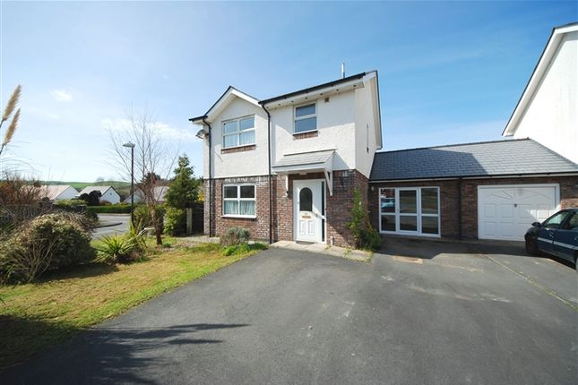 Thumbnail Link-detached house to rent in Paitholwg, Rhydyfelin, Aberystwyth