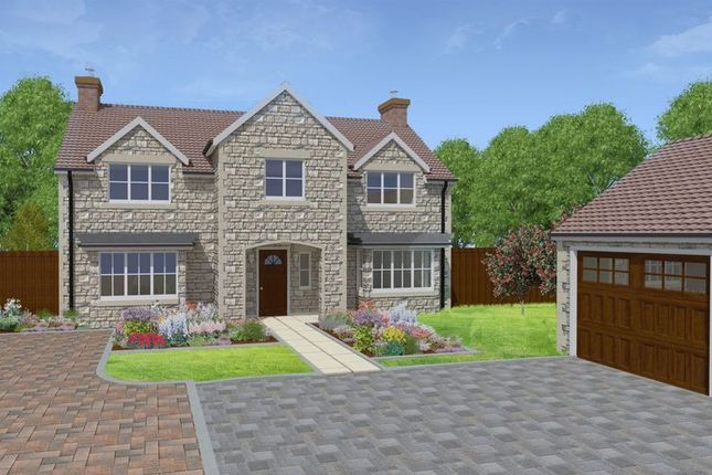 Thumbnail Detached house for sale in Critch Hill, Frome