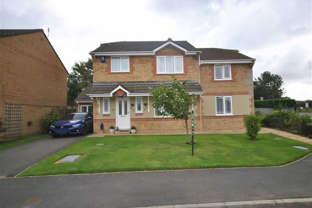 Thumbnail Detached house for sale in Swallow Field, Roundswell, Barnstaple