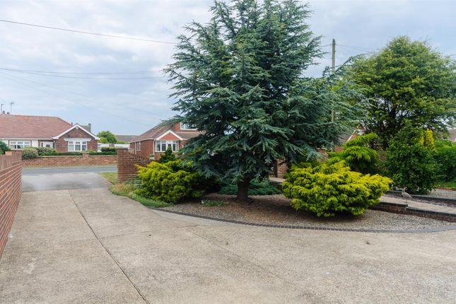 Dsc_9413 of Holmpton Road, Withernsea HU19