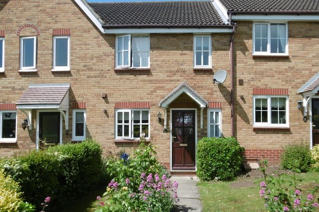 Thumbnail Terraced house to rent in Reynolds Way, Sudbury