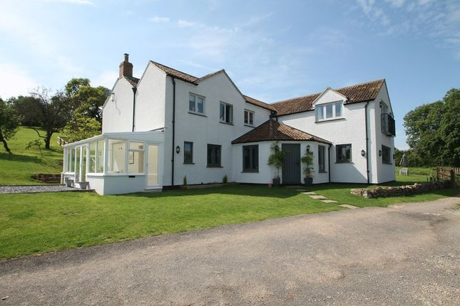 Thumbnail Detached house for sale in Gagley Lane, Easton, Wells
