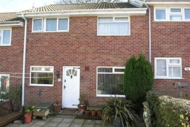 Thumbnail Terraced house to rent in Halcombe Estate, Chard