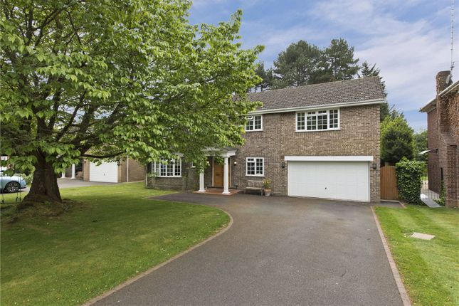 Thumbnail Detached house to rent in Pine Walk, Cobham, Surrey