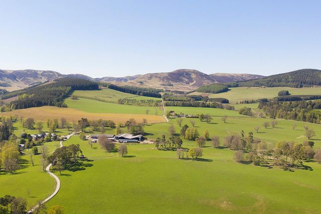 Thumbnail Farm for sale in Peebles, Scottish Borders