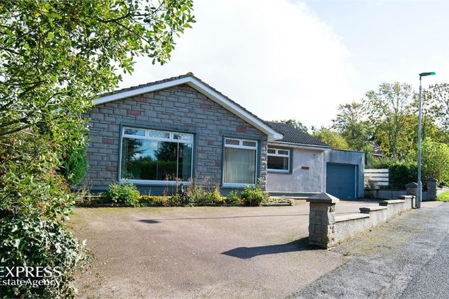 Thumbnail Detached bungalow for sale in Fairview, Rathen, Fraserburgh, Aberdeenshire