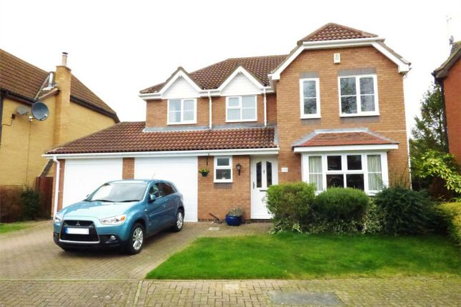 Thumbnail Detached house for sale in Riverside Gardens, Peterborough, Thorpe Meadows