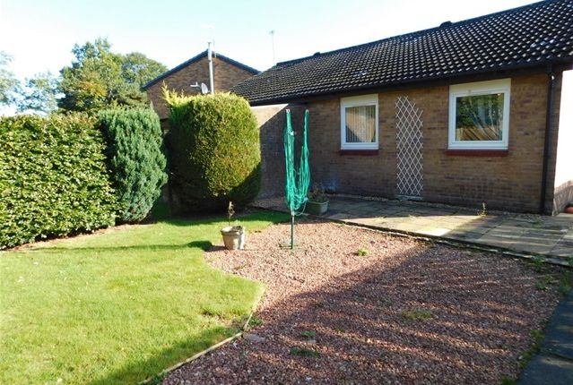 Thumbnail Semi-detached bungalow to rent in East Bankton Place, Murieston, Livingston
