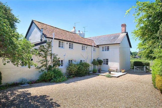 Thumbnail Detached house for sale in Buckland Newton, Dorchester, Dorset