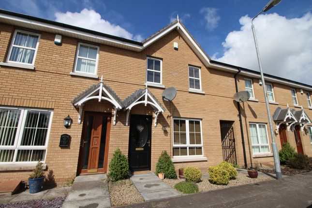 Thumbnail Terraced house to rent in Mornington Lane, Lisburn