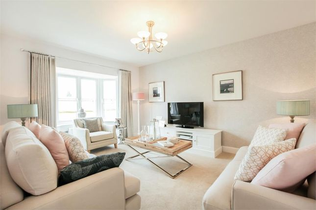 """Thumbnail Detached house for sale in """"Shenstone"""" at Old Broyle Road, West Broyle, Chichester"""