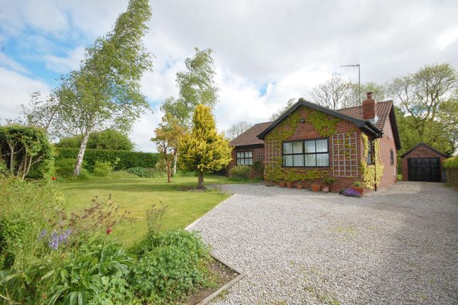 Thumbnail Bungalow to rent in Birches, West Lutton, Malton