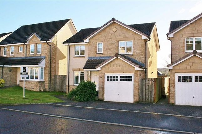 Thumbnail Detached house for sale in Lind Place, Dennyloanhead, Bonnybridge