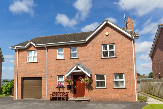 Thumbnail Detached house for sale in Woodland Manor, Belfast