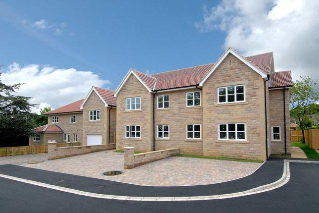 Thumbnail Semi-detached house to rent in Cedar Grove, Harrogate