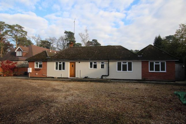 Thumbnail Bungalow for sale in Sandhurst Road, Finchampstead