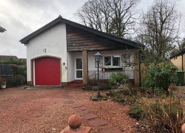 Thumbnail Bungalow to rent in Beechwood Court, Strathaven
