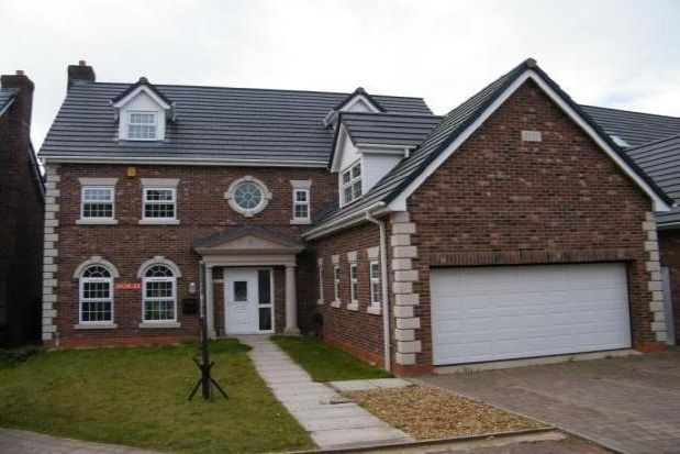 Thumbnail Detached house to rent in Rowton Rise, Standish, Wigan