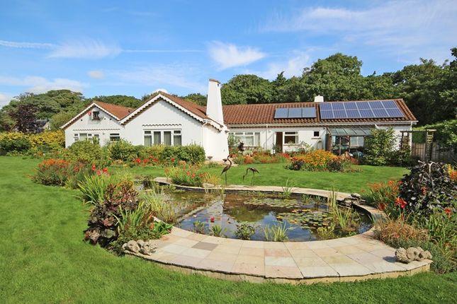 Thumbnail Detached bungalow for sale in Barton Common Lane, Barton On Sea, New Milton
