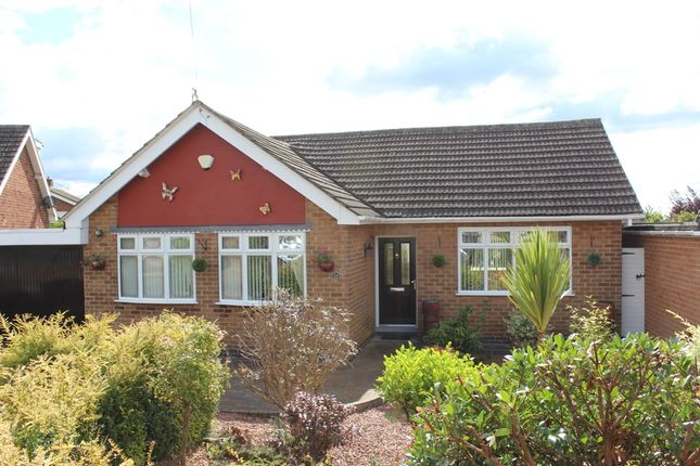 Thumbnail Bungalow for sale in Violet Ave, Newthorpe