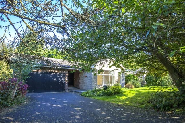 Thumbnail Bungalow for sale in Crofts Park, Hepscott, Morpeth
