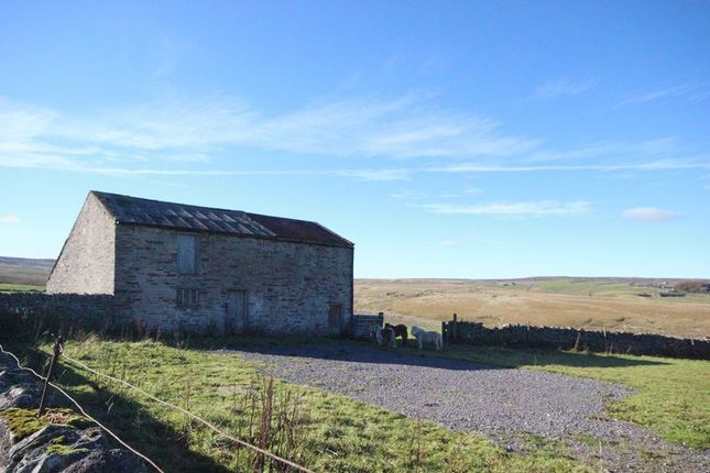 Thumbnail Property for sale in Allenheads, Hexham