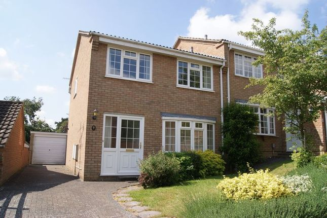 Thumbnail Detached house to rent in Grasmere Road, Farnham