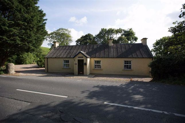 Thumbnail Cottage for sale in Crossgar Road, Ballynahinch, Down