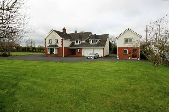 Thumbnail Detached house for sale in New Forge Road, Magheralin, Craigavon, County Armagh