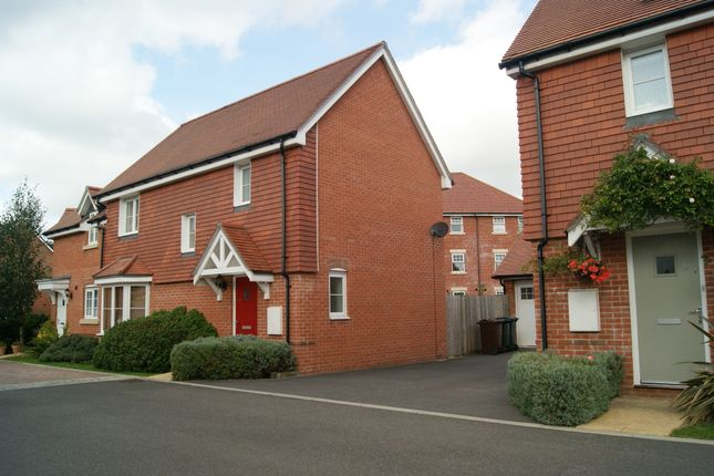 Thumbnail 3 bed semi-detached house to rent in Rickards Gardens, Hellingly