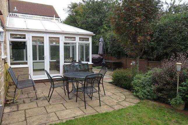 Rooms To Rent Chard Uk