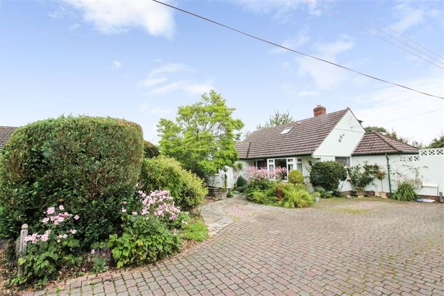 Thumbnail Detached bungalow for sale in Oldway Park, Wellington, Somerset