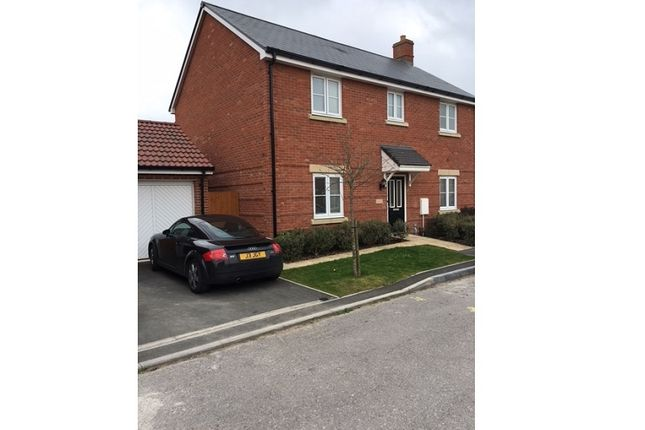 Thumbnail Shared accommodation to rent in Robin Road, Old Sarum, Salisbury, Wiltshire