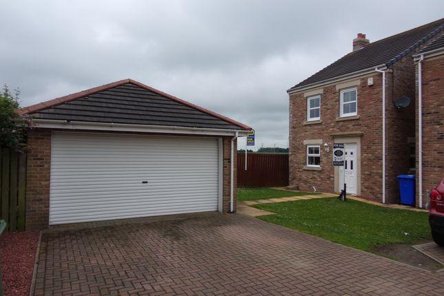 Thumbnail Detached house for sale in Aysgarth, Cramlington